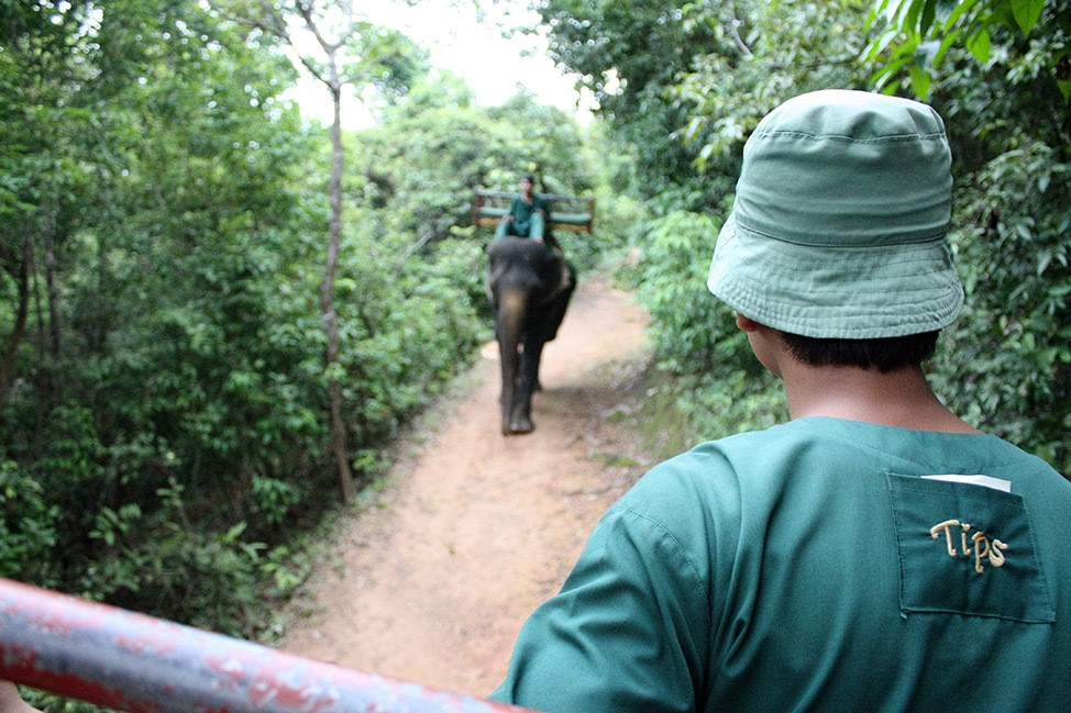 Phnom Bakheng Elephant Ride