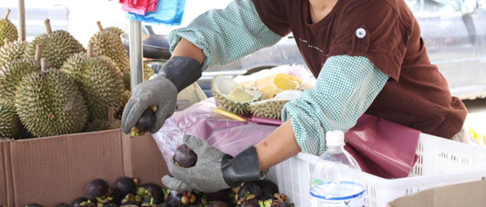 The Cameron Highlands: Smelly Asian Fruit and Really BigBugs thumbnail