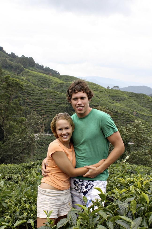 Boh Tea Plantation Cameron Highland