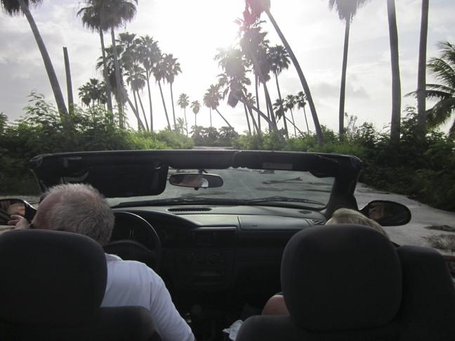 Grand Cayman Road Trip