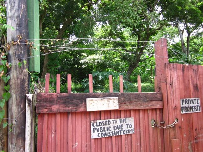 Iguana Station, Utila, Honduras
