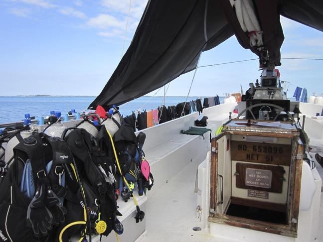 Blackbeard's Cruises Bahamas