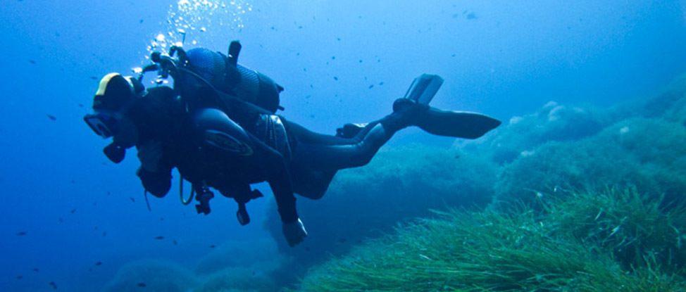 Diving Ibiza thumbnail