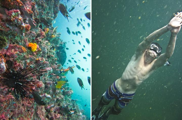 Diving Ang Thong Marine Park