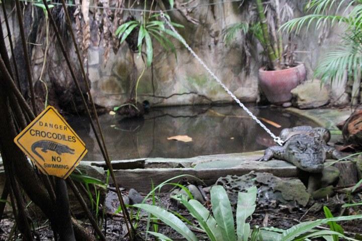 Snake House Sihanoukville