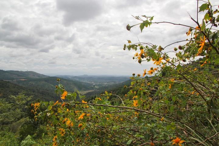 Countryside, Dalat, Vietnam