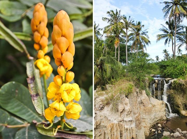 Fairy Spring, Mui Ne, Vietnam