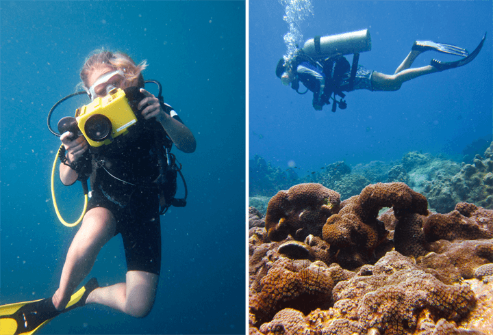 Underwater Videography Koh Tao