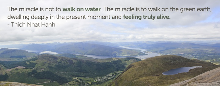The miracle is not to walk on water.