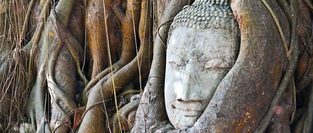 The Temples of Ayutthaya thumbnail