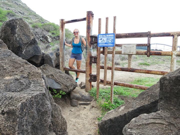 Hiking Ka'ena Point