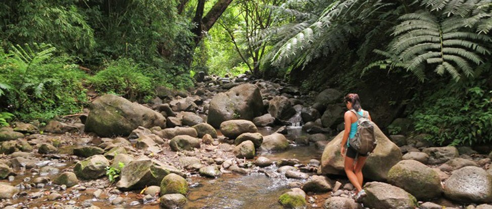 Five Fantastic Hikes in Oahu thumbnail