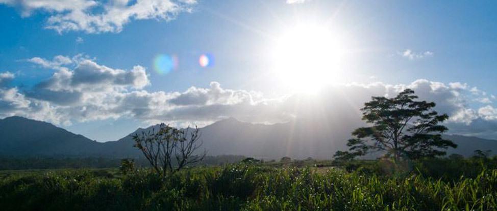 Waimea Bay, Hale'iwa, and a Pineapple Plantation: An Oahu Road Trip thumbnail
