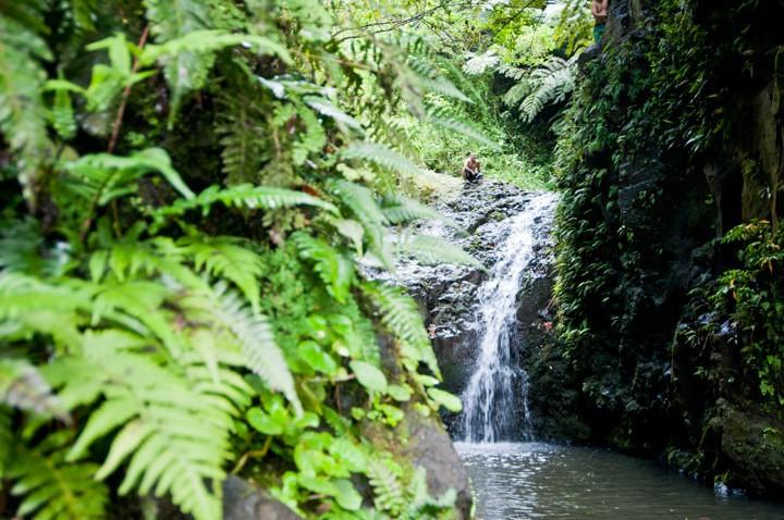Hiking Maunawili Falls