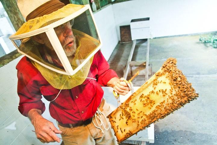 Volcano Island Honey