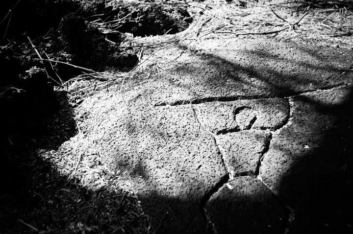 Puako Petroglyph Preserve