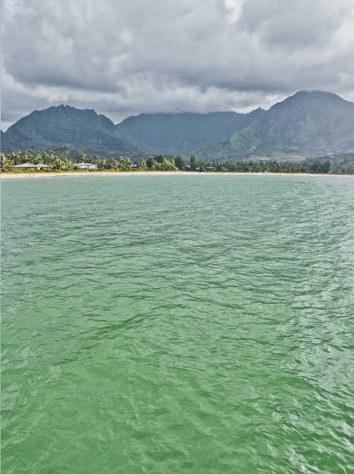 SUP Kauai