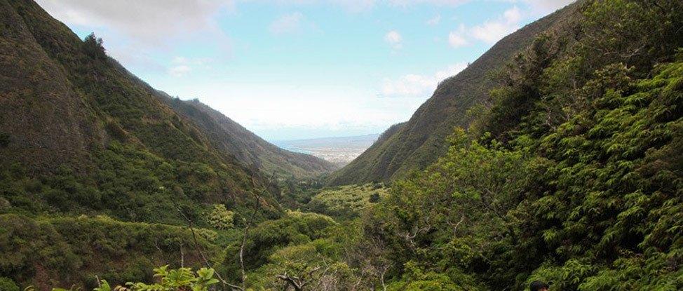 Hiking Iao Valley's Secret Trail thumbnail