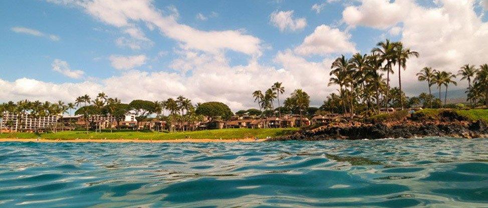Blissful Beach Days in Maui thumbnail