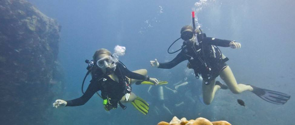 Discovering Scuba Diving in Koh Tao thumbnail