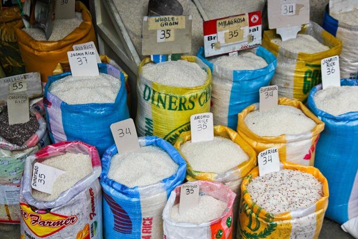 Rice in Banaue, Philippines