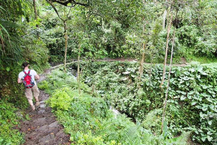 Hike through Batad Junction