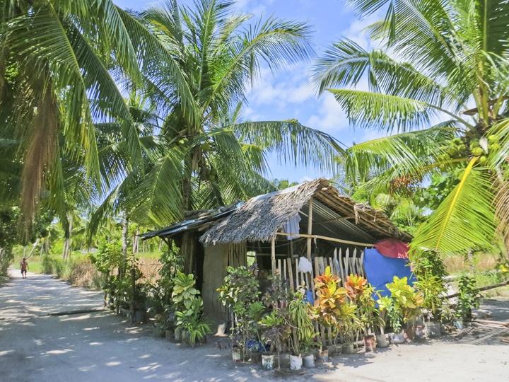 A Hut on Malapascua