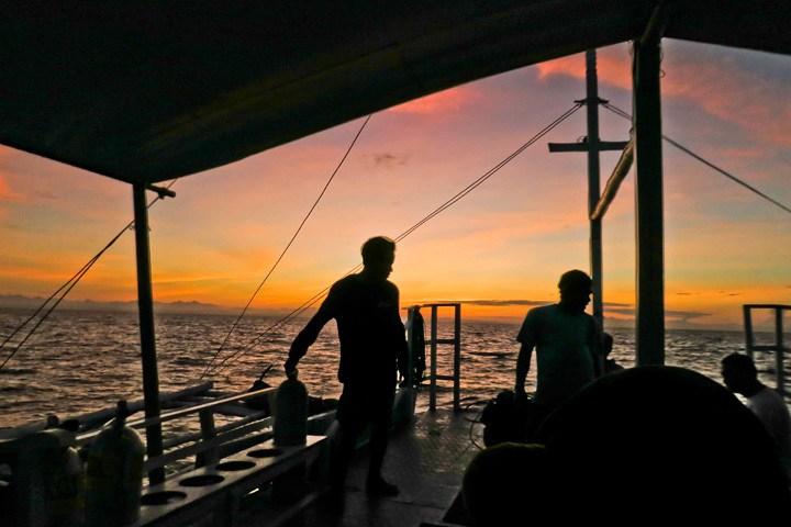 Thresher Shark Dive, Malapascua