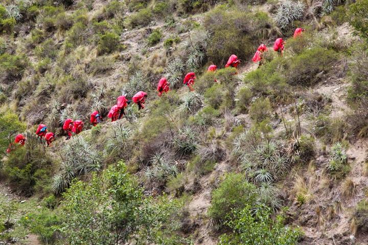Llama Path Porters on the Inca Trail
