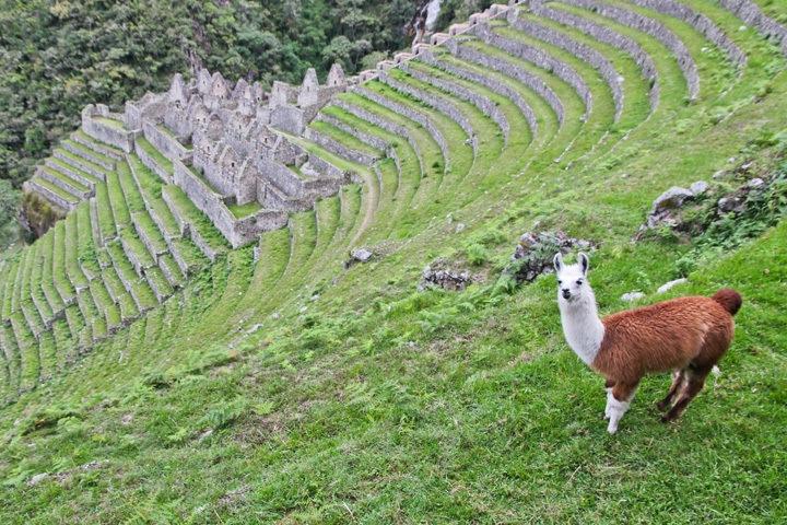 Logistics of Hiking the Inca Trail