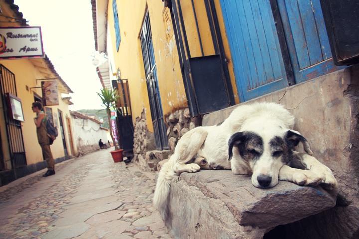 Cusco Photos