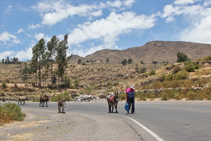 Cabonaconde, Peru