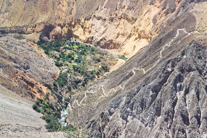 The Colca Canyon, Peru