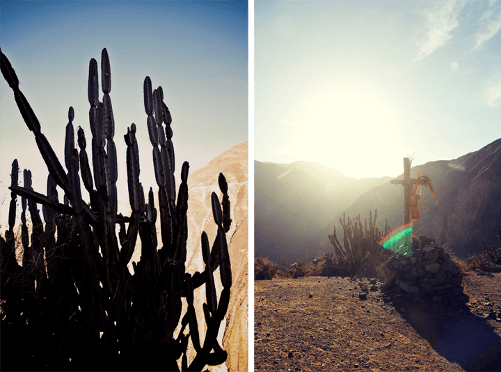 Trekking into the Colca Canyon