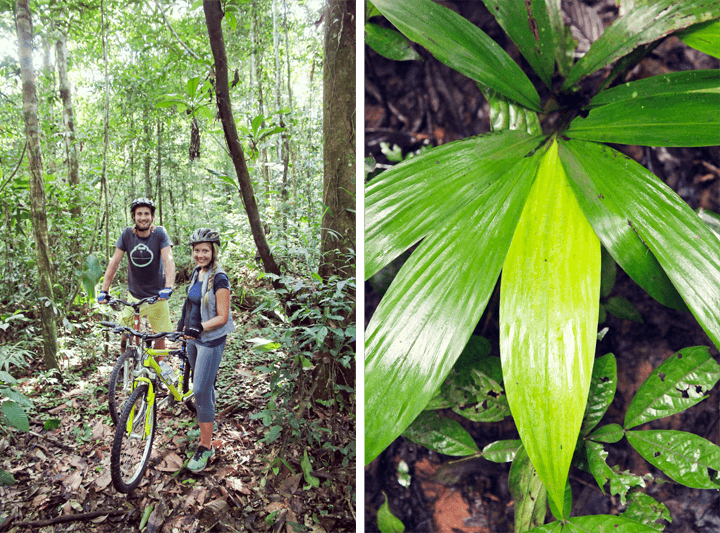 Biking at Refugio Amazonas