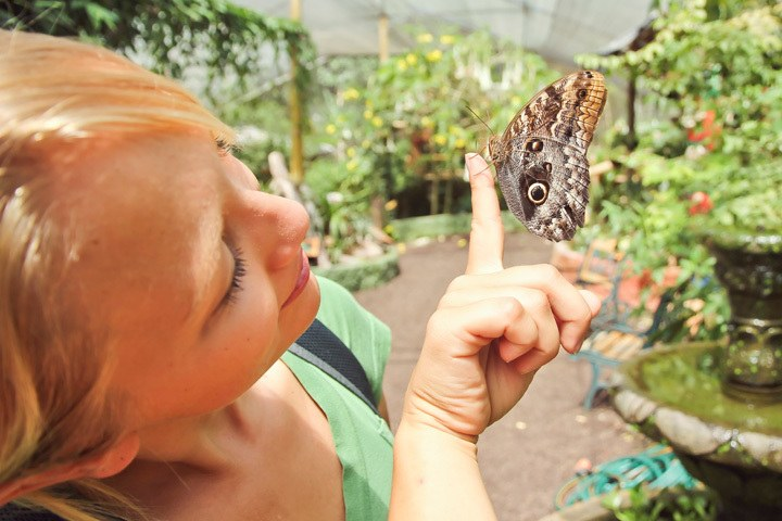 Holding Butterfly in Mindo, Ecuador