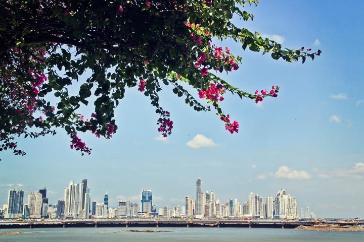 Panama Skyline from Casco Viejo