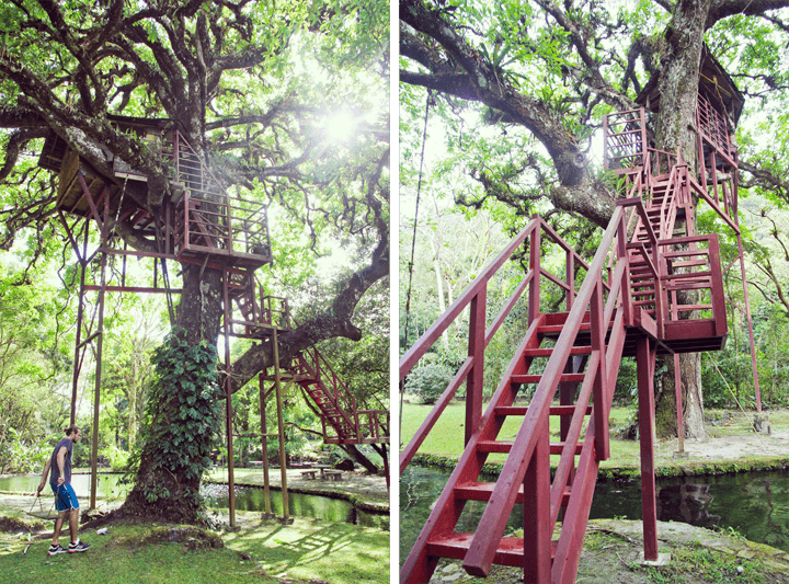 Treehouse in Panama