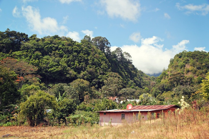 Countryside of Boquete, Panama