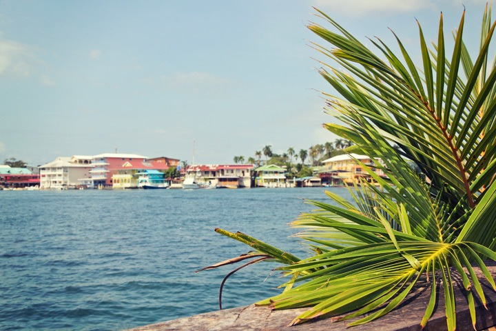 Aqua Lounge Bocas del Toro