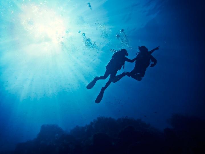 Diving in Isla de Coiba