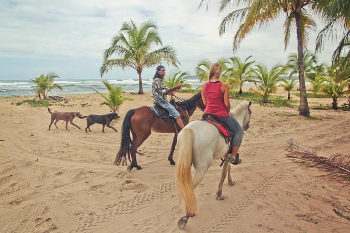 Ethical Horseback Riding