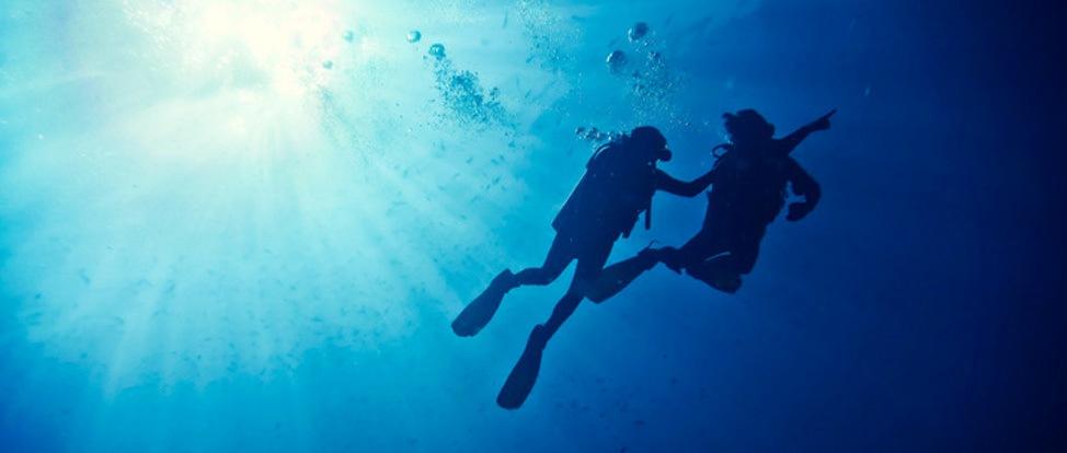 A Diving Dare: Isla de Coiba Part II thumbnail