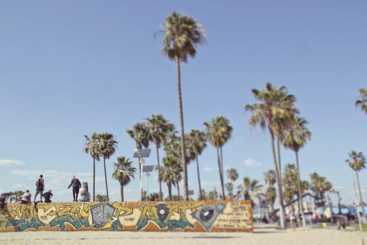 Venice Skate Park