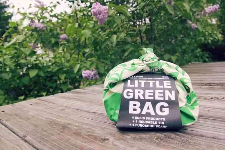 Lush Little Green Bag