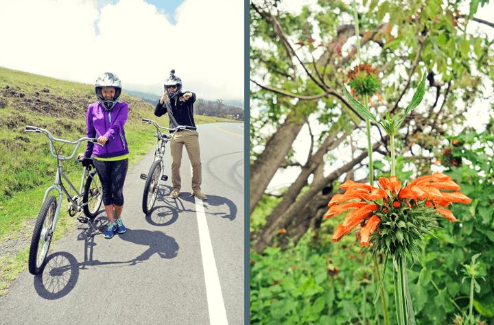Biking Mount Haleakala