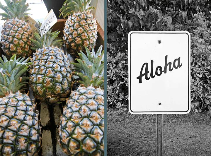Aloha Sign Maui