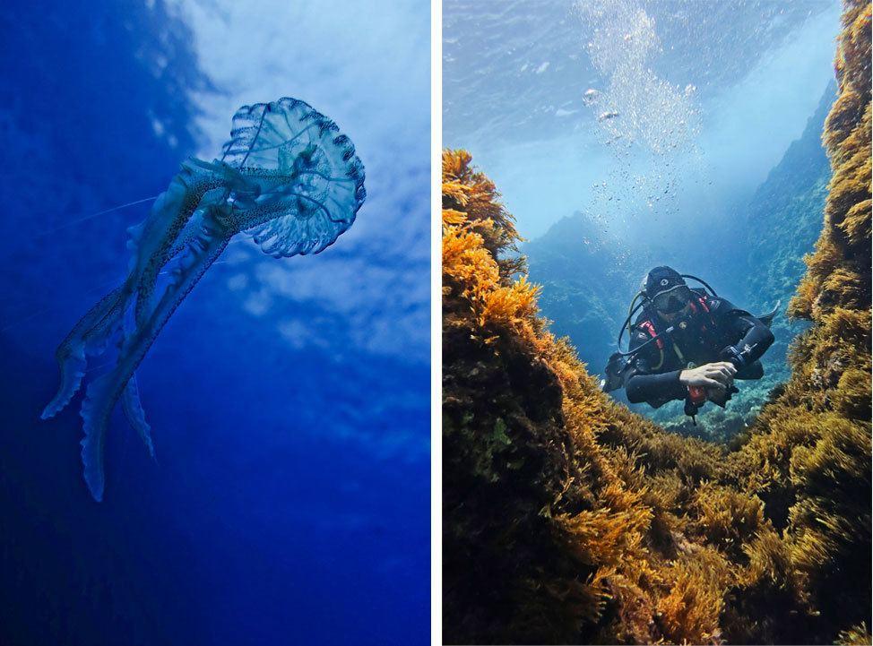 Diving with Maltaqua