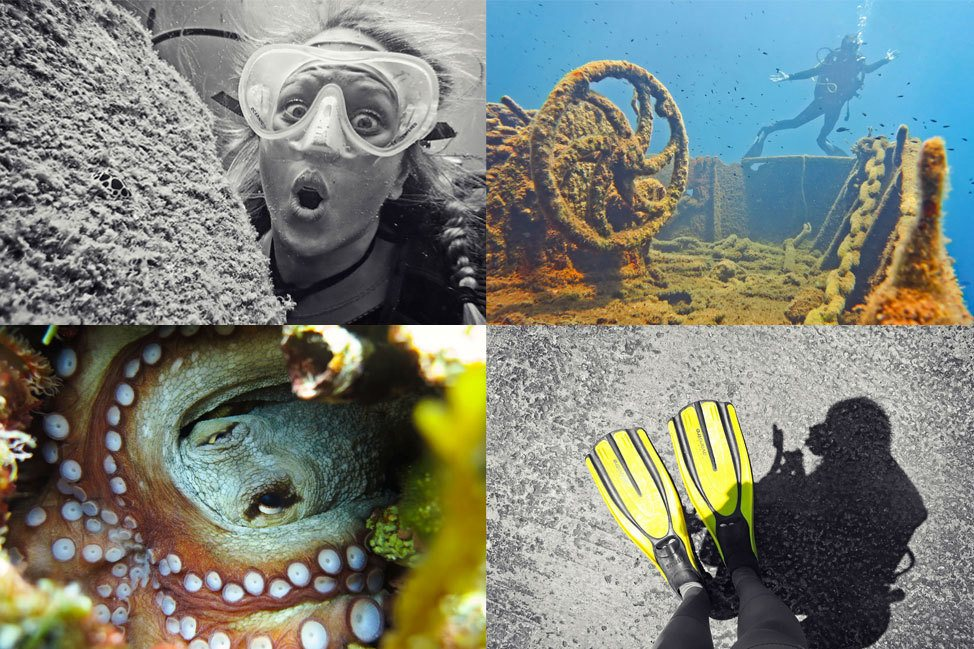 Diving Roundup