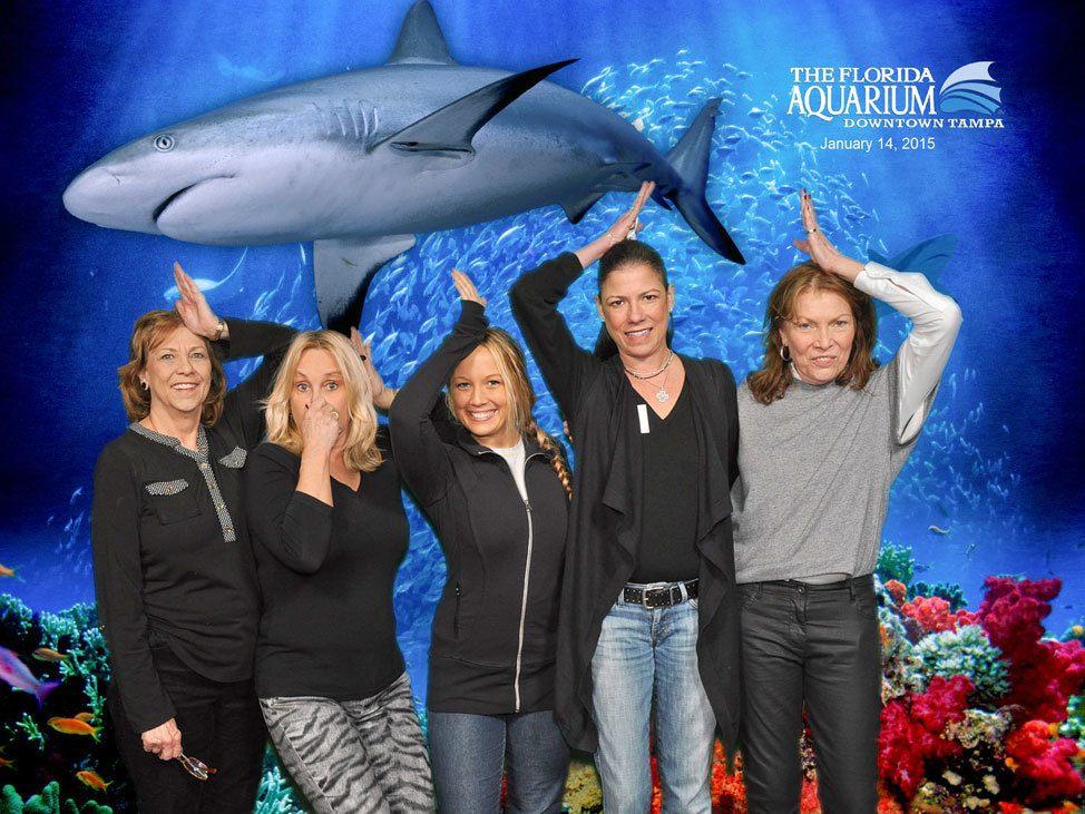 Dive WIth The Sharks at the Florida Aquarium